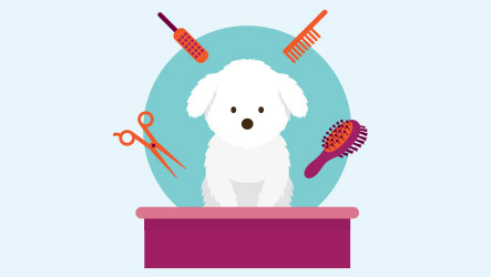 How much time can you dedicate to brushing and grooming your dog?